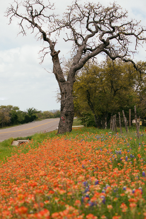 Photographer in Austin Tx Highway 29 Llano